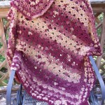 No Beginning Chain Basket Pattern Throw